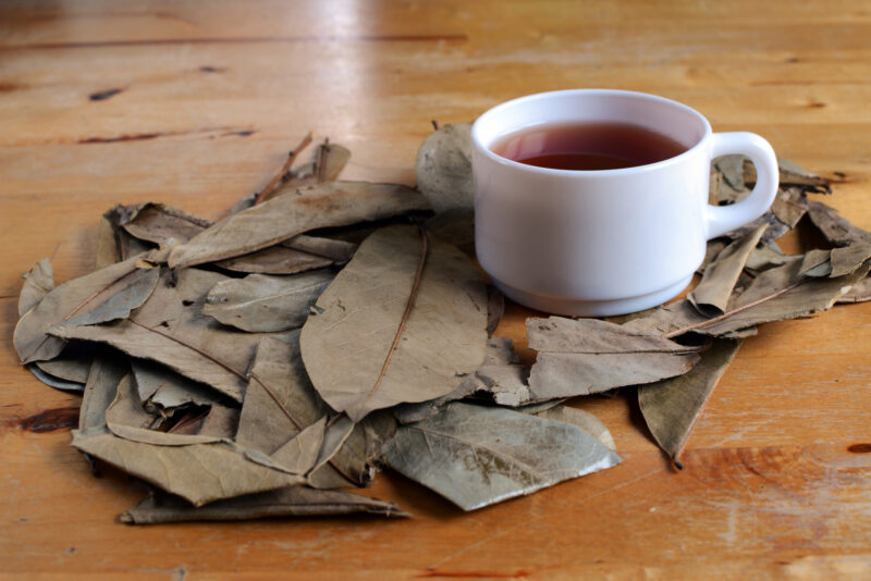 Looking for kratom tea recipes? Check our article for a helpful bevy of ideas to try. You won't regret trying these awesome concoctions.